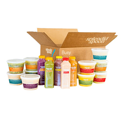 Splendid Spoon meal delivery company